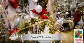 Southern Christmas Show video capture
